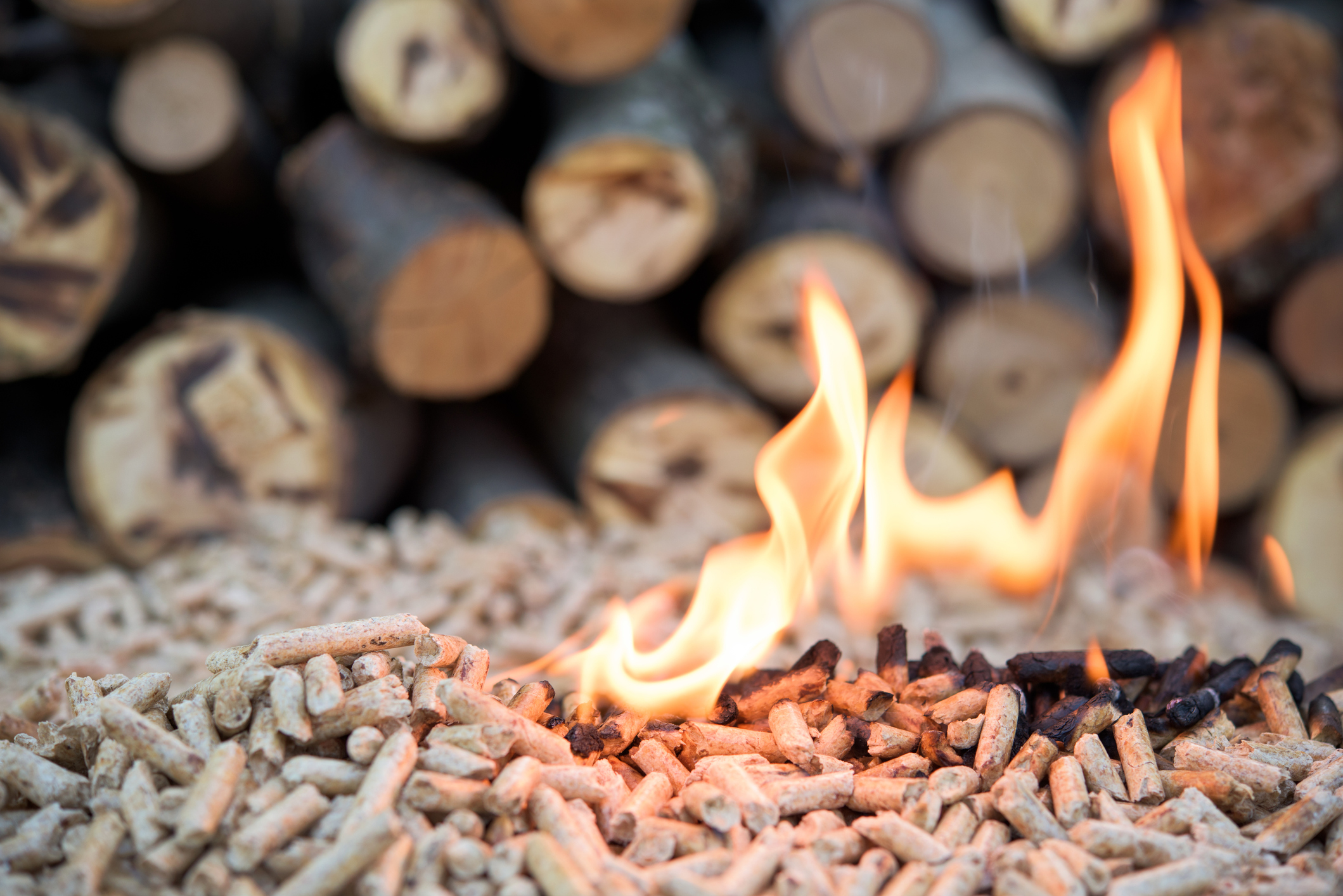 Granulés de bois pour chaudière à pellets Energreen