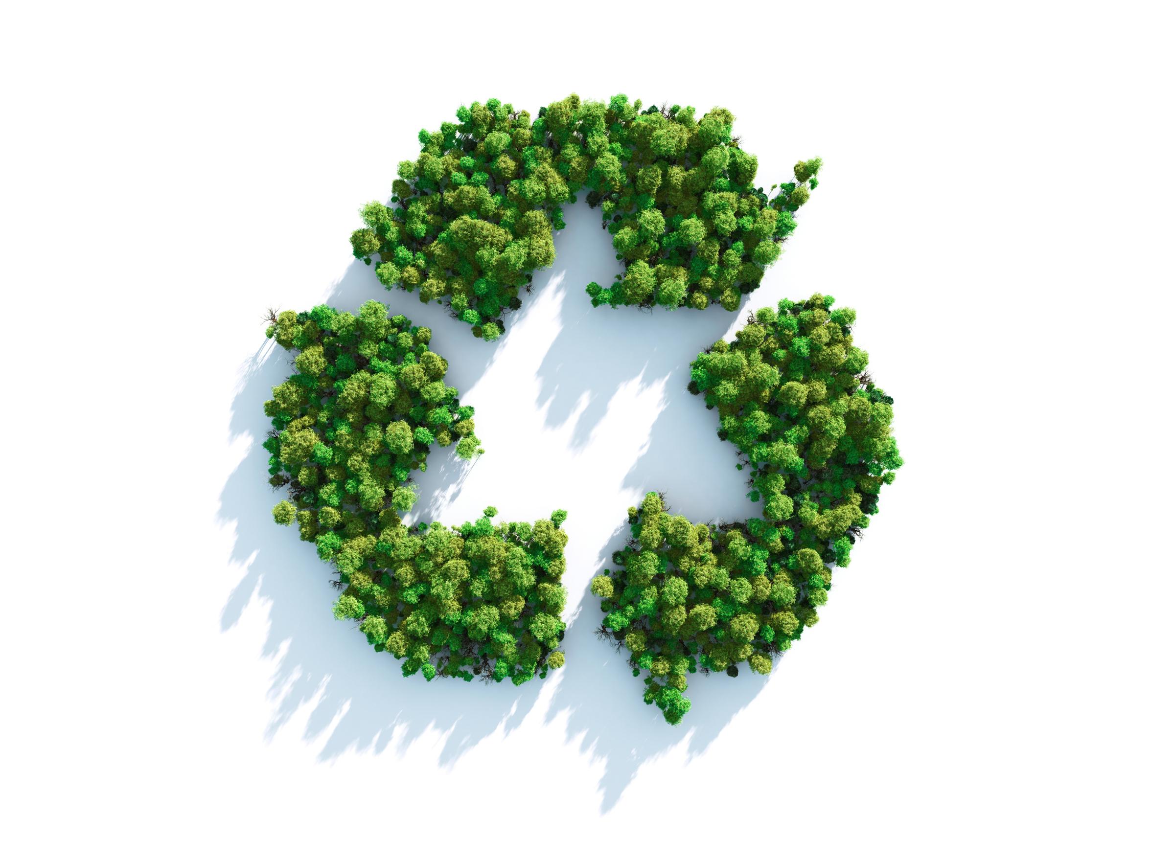 Energreen recyclage des panneaux photovoltaïques