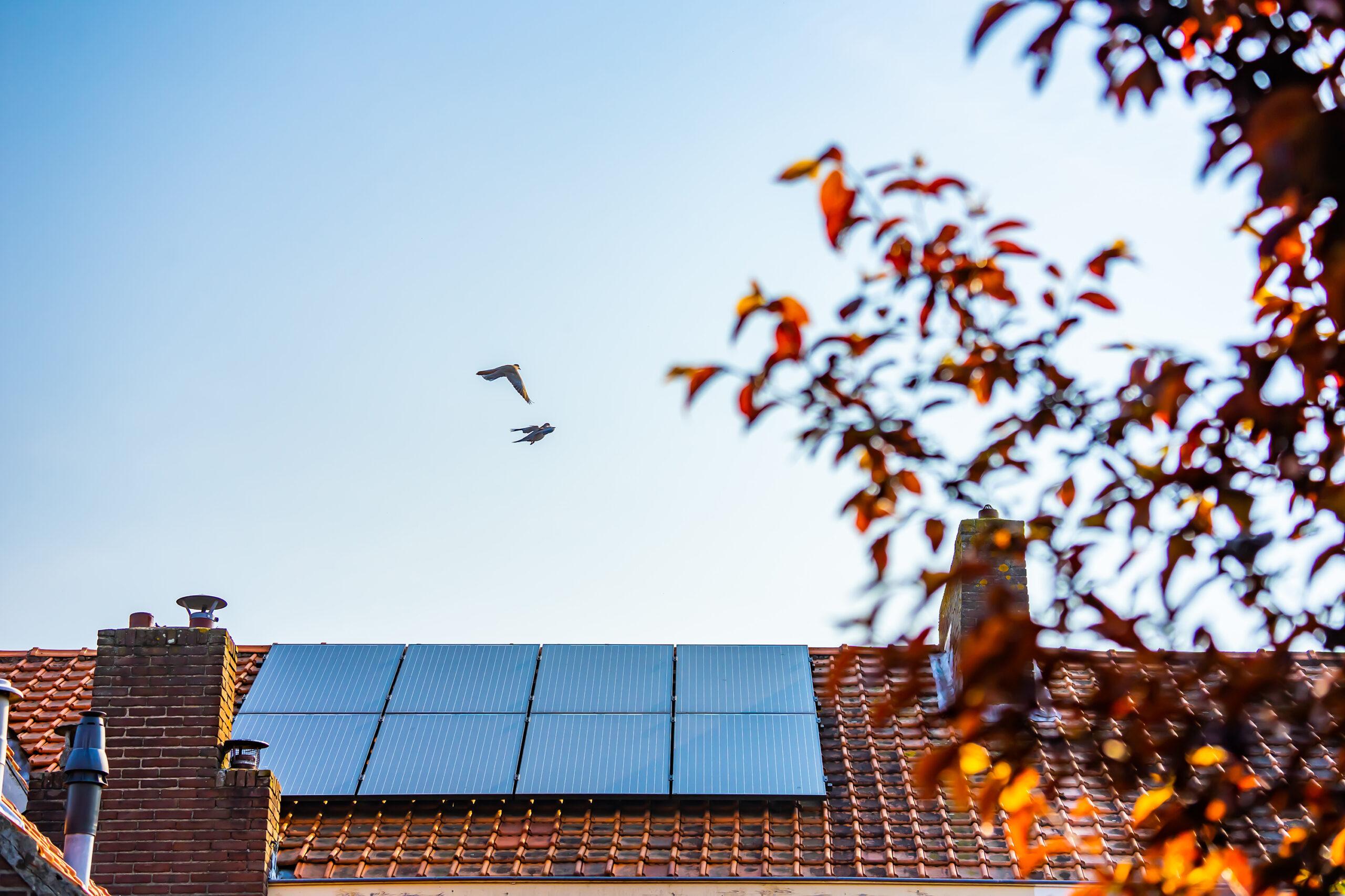 Panneaux solaires photovoltaïques Label EU15 Energreen