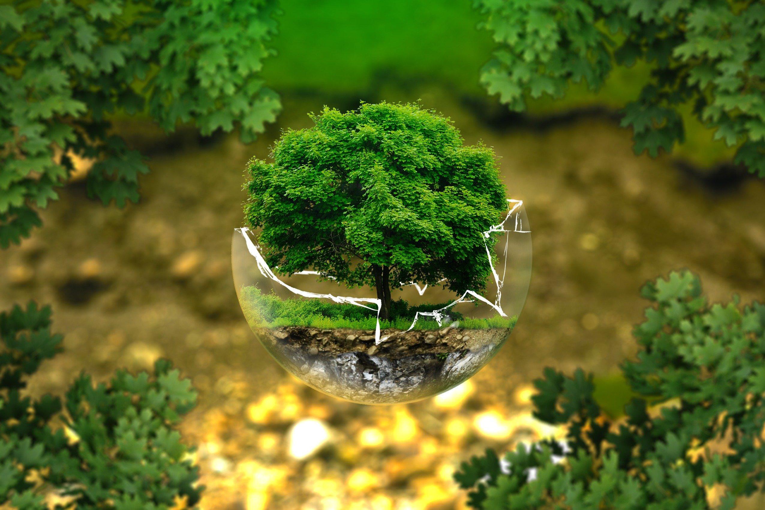 Protéger l'environnement et économiser les ressources