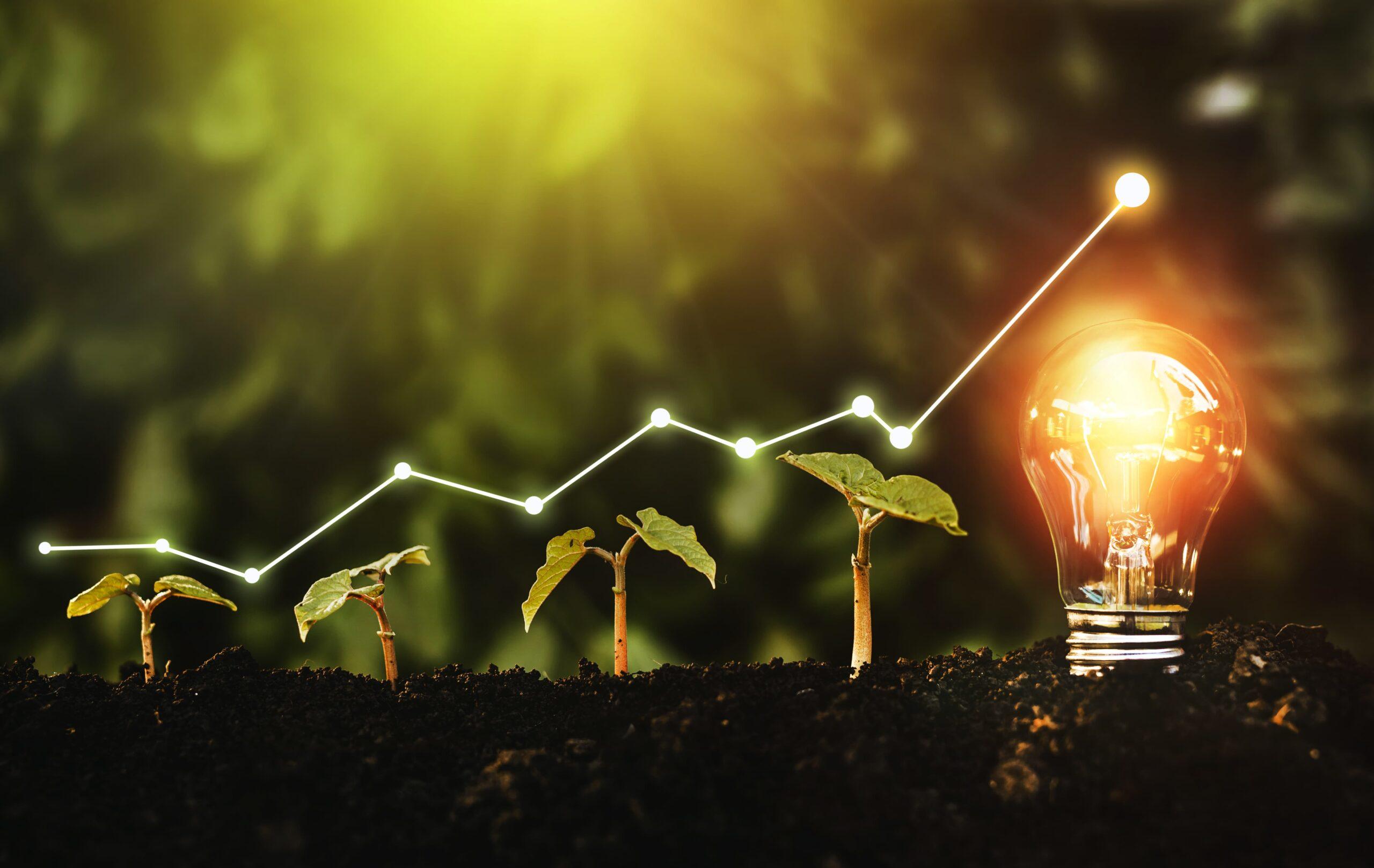 Les augmentations des prix de l'énergie poussent les consommateurs vers le photovoltaïque