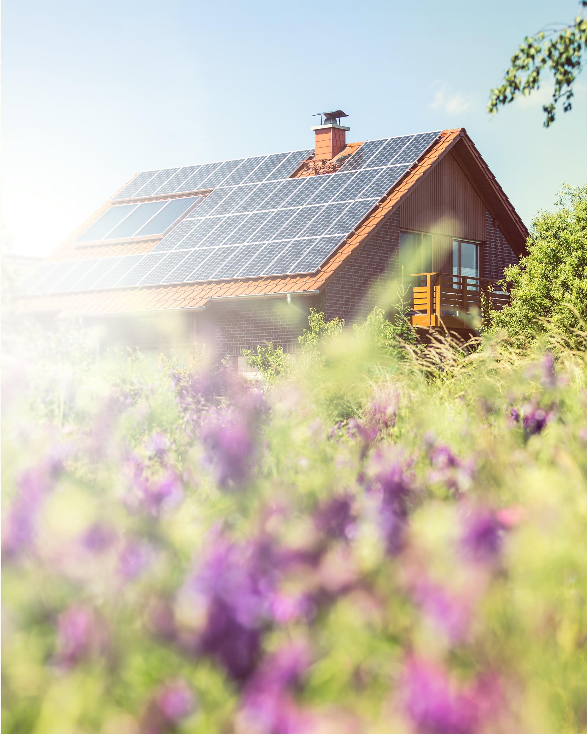 4 idées reçues sur les panneaux photovoltaïques | Energreen