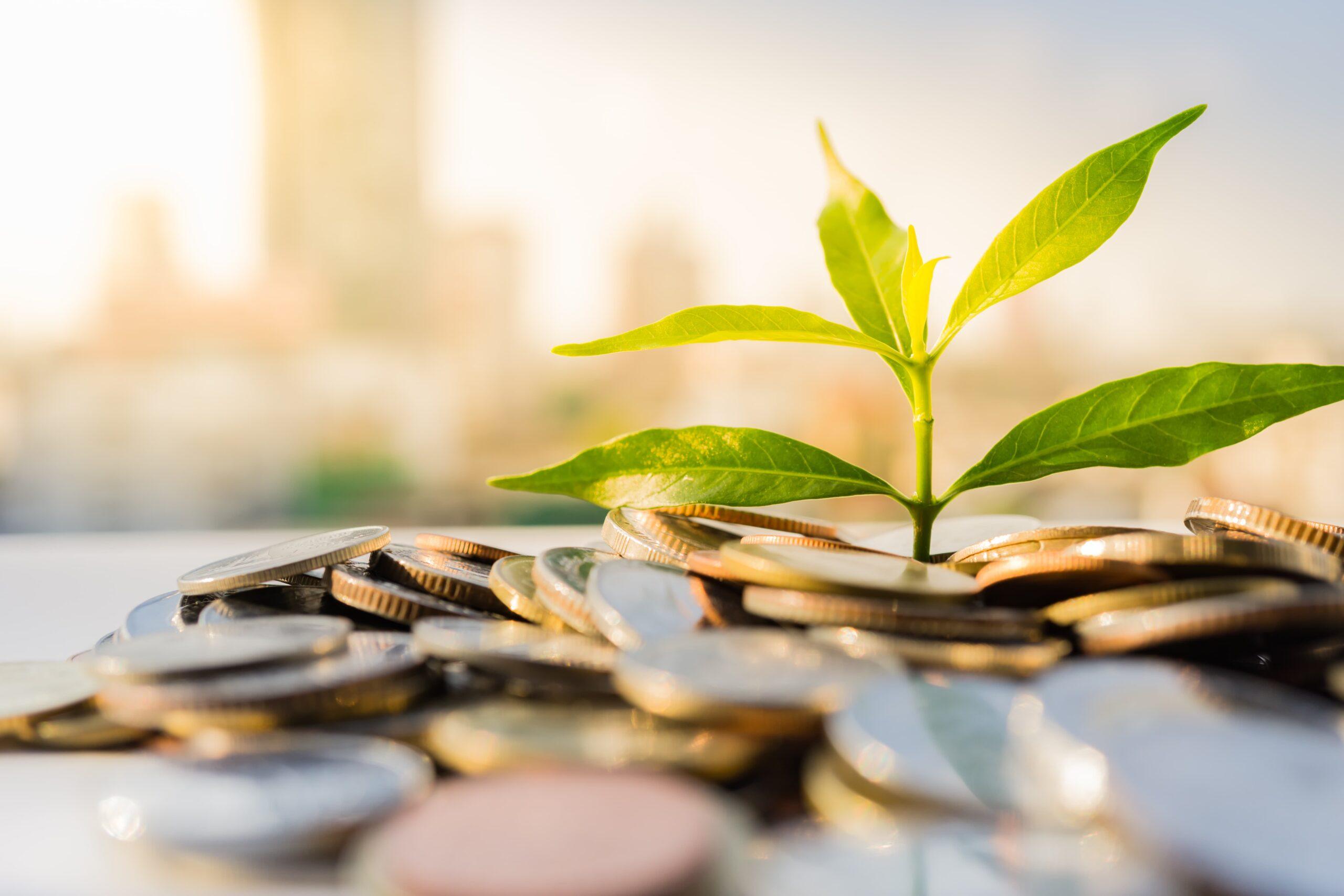 Economies financières durables   Energreen